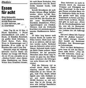 Artikel im Stern vom 23.07.1981